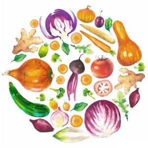 Alimentación Bio